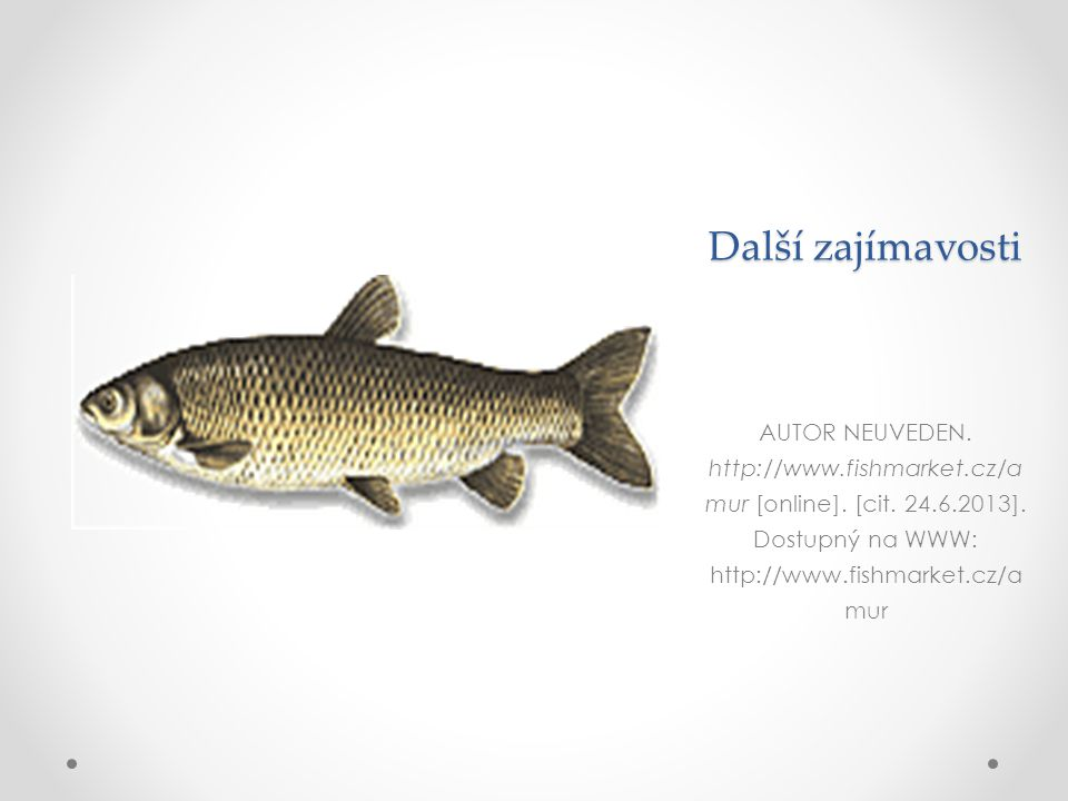Další zajímavosti AUTOR NEUVEDEN. http://www.fishmarket.cz/amur [online].
